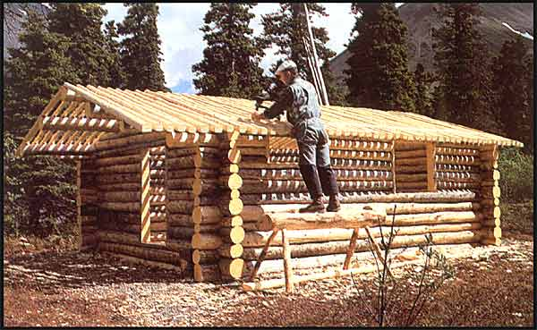 How to Build an Off Grid Log Cabin: For FREE! - YouTube